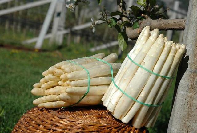 Asparagi: 12 mete dove mangiarli al top