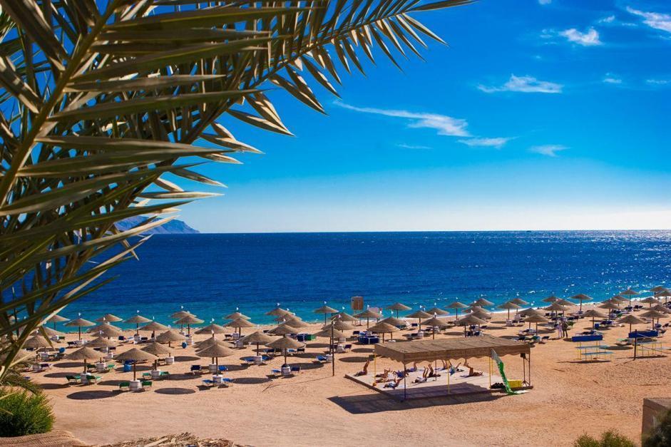 Egitto, tra diving e relax: LE FOTO