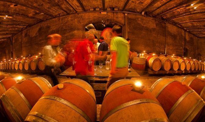 Foto A tutto vino (altoatesino)