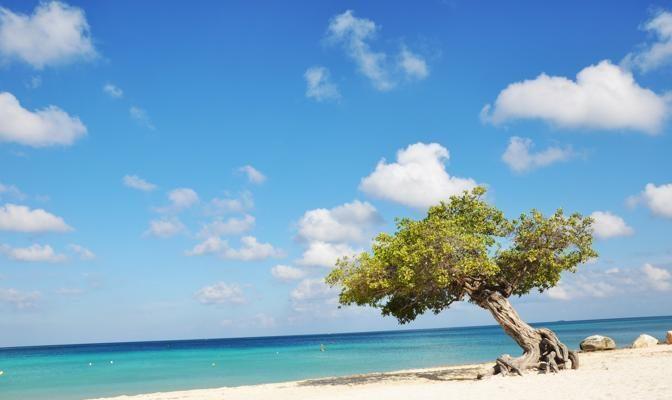 Foto Aruba: Happy Island