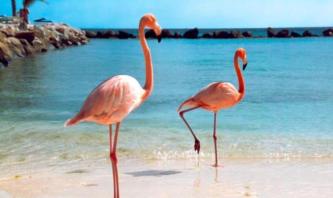 Foto I colori dell'isola