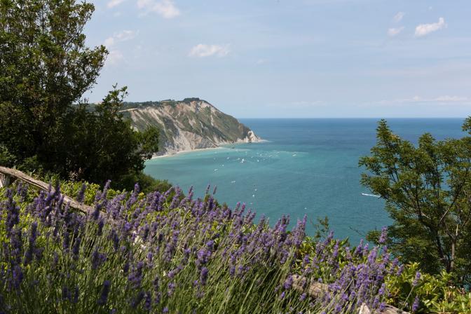 Il mare tra la Baia di Portonovo e il Monte Conero visto dall'Hotel Emilia