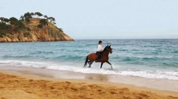 La selvaggia Playa Castells