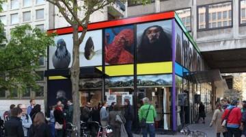 Grrr Jamming Squeak, opera pubblica di Paola Pivi commissionata da Sculpture International Rotterdam. Dal 23 aprile 2010 al 31 luglio 2011 (foto di Attilio Maranzano)