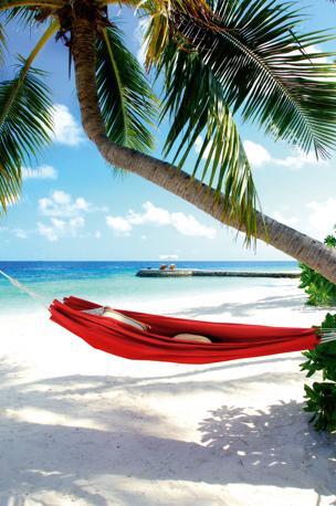 Un'amaca tra le palme sulla spiaggia di sabbia candida del W Retreat & Spa, sull'atollo di Ari Nord