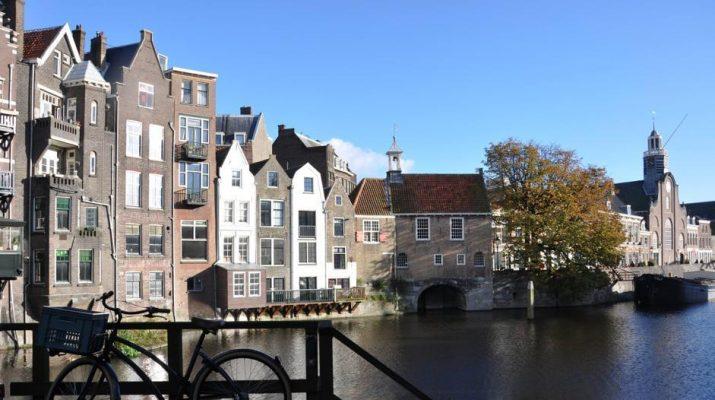 Foto Rotterdam: innovativa e green