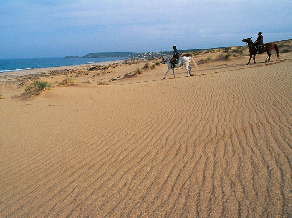 Sardegna: inverno ai Tropici. D'Italia