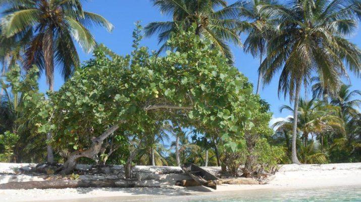 Foto Le isole Kuna Yala in barca