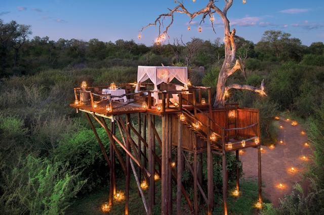Hotel sugli alberi: 10 suite vista stelle - Foto Dove Viaggi