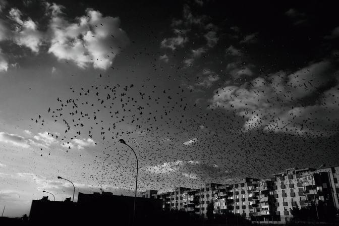 La crisi raccontata dai fotografi