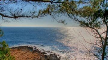 Discesa al mare in mezzo ai sentieri a Carry-Le-Rouet