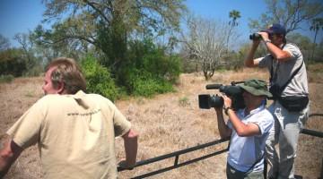 Gorongosa National Park: il parco è il paradiso degli walking safari e delle passeggiate naturalistiche