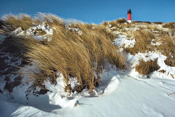 Chiari di duna