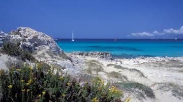 La macchia mediterranea incornicia un mare da sogno (foto Alamy/Milestonemedia)