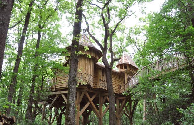 Hotel sugli alberi: 10 suite   vista stelle
