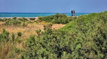 Maremma: spiagge dorate, fondali bassi e un'oasi verde nel cuore della Toscana