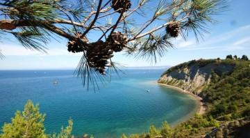 Falesie sul mare: vicina ed economica la costa Slovena offre un grande mare a un piccolo budget (foto: Turismo Portoro?)