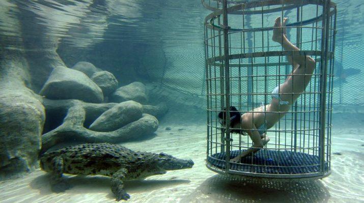 Foto Vacanze-coraggio: 15 esperienze per viaggiatori senza paura