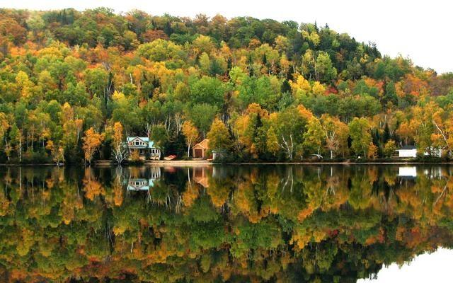 Foto Foliage, 15 mete per innamorarsi dell'autunno