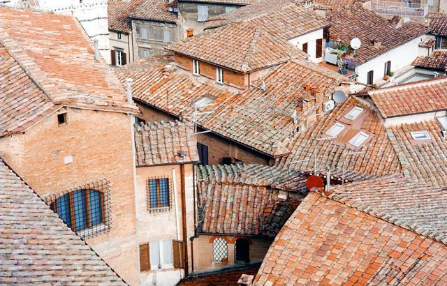 Parigi, Tallin, Siena: i tetti più belli del mondo