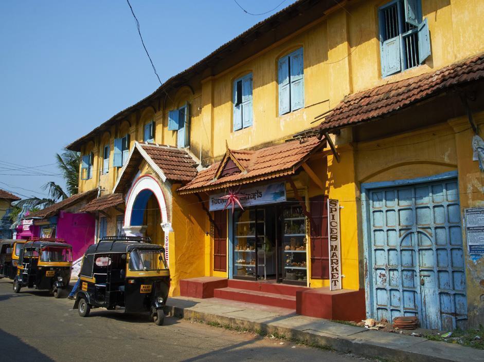 Giungla India