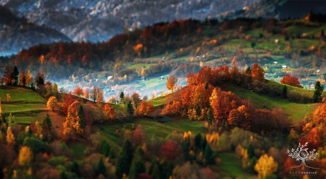 Foto Transilvania mai vista: le foto incredibili di Alex Robciuc