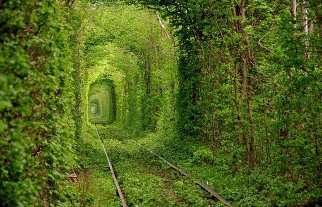 Tunnel of love (Ucraina)