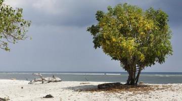Una spiaggia di Trawangan, la più grande delle isole Gili
