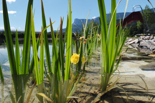Acqua dolce: 10 tuffi di lago scelti da Dove