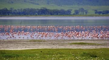 Tanzania-ThinkstockPhotos-473462440