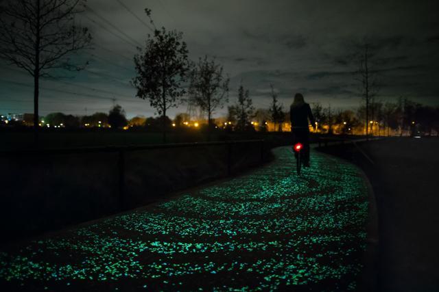 Olanda: in bici sulla Notte stellata