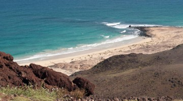 Le isole di capo verde furono una delle tappe di Charles Darwin durante il suo viaggio a bordo del brigantino Beagle (foto: iStock Photos/Paolo Marchetti)