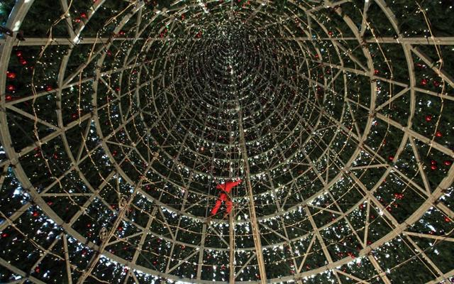 Alberi di Natale: i più spettacolari e  curiosi del mondo