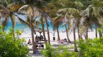 Le spiagge di Jumeira, a Dubai, sono caratterizzate da spiagge di sabbia bianca, mare cristallino e giardini rigogliosi per ripararsi dal sole (foto: Alamy/Milestonemedia)