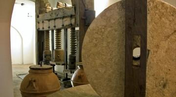 La macina di un antico frantoio (foto: Frantoi aperti/Michelangelo Spadoni)