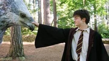 Nel parco c'è anche l'animatrone dell'ippogrifo Fierobecco (foto: © 2011 Warner Bros. Ent. Harry Potter Publishing Rights © J.K.R.)