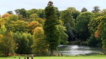 Uno scorcio di Hampstead Heath: 3,2 kmq di verde pubblico