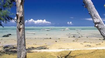 Acque limpide e spiaggia finissima sono una Caratteristica di Mauritius