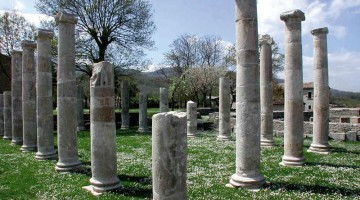 Le colonne ioniche lisce della basilica dell'antica Saepinum, struttura pubblica romana polivalente nelle funzioni giudiziarie, commerciali e religiose