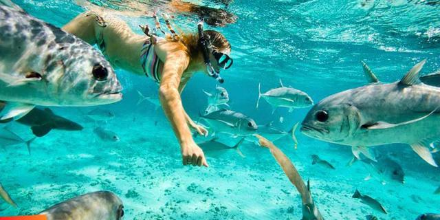 Snorkelling: 10 fondali da urlo