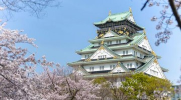 Il castello di Osaka in primavera (foto Getty Images)