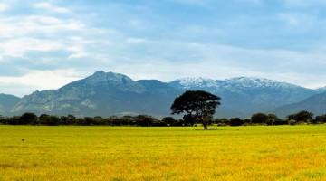 Panoramica sul Massiccio del Linas, nel Medio Campidano