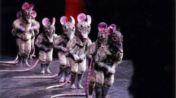 """I topolini tra i protagonisti dello spettacolo per bambini """"Lo schiaccianoci"""""""