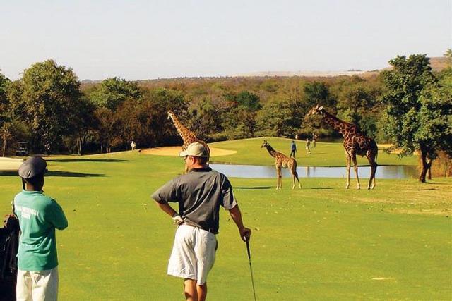 Golf, quando il campo diventa uno spettacolo