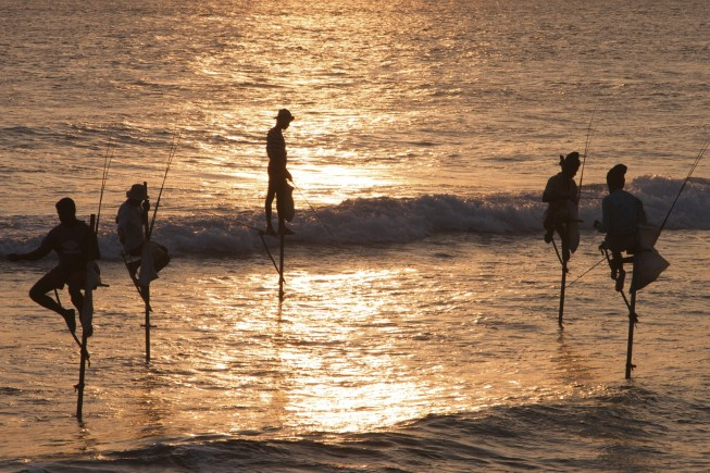 Stick Fishermen at Sunset