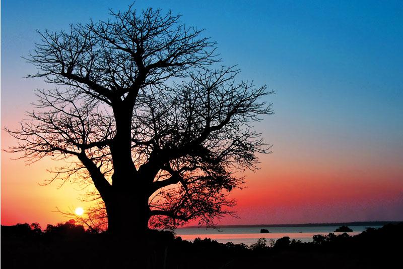 """Lo spettacolo dell'""""ora viola"""", quando il sole al tramonto incendia il cielo"""