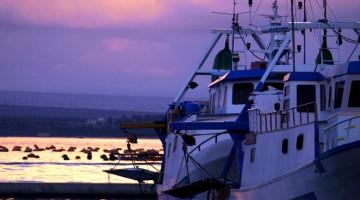 Alcune barche attraccate lungo la costa nei dintorni di Taranto (foto: Paola Padula)