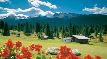 Bellamonte è un buon punto di partenza per visitare il Parco Naturale di Paneveggio e le Pale di San Martino