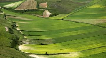 """Non è un caso se l'Umbria viene definita """"la verde Umbria"""" (foto: Carlotta Lombardo)"""