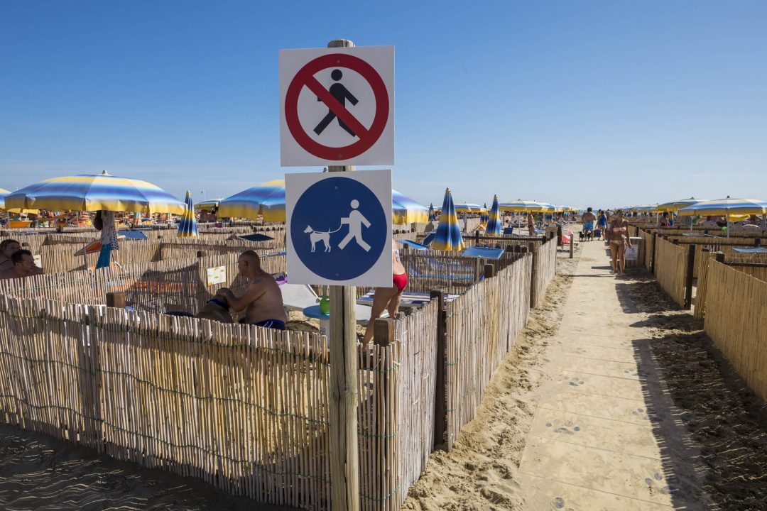 Rimini, la dog beach 5 stelle
